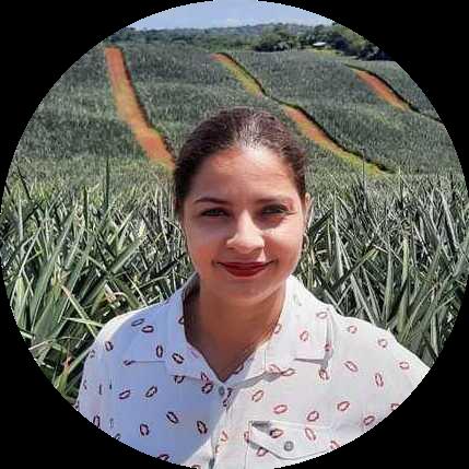 Mariel I. Cárdenas Colorada Fresh Pineapples